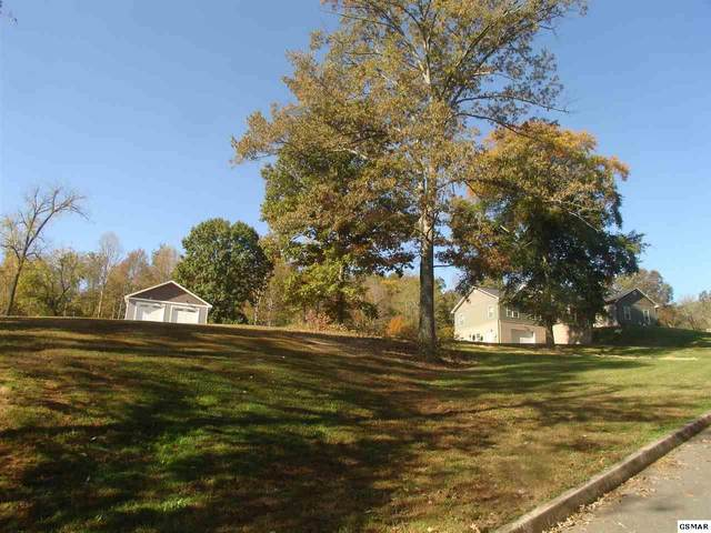 1423 Pleasant Oaks Rd, Sevierville, TN 37876 (#230842) :: Prime Mountain Properties