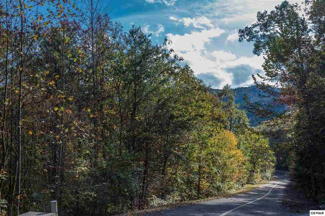 Lot 74E & 75E Redtail Rd, Sevierville, TN 37862 (#230844) :: Prime Mountain Properties