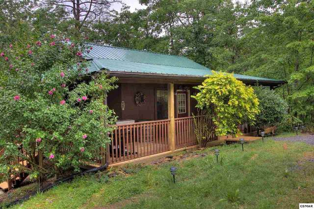 3224 Cove Creek Way, Sevierville, TN 37862 (#230850) :: Billy Houston Group
