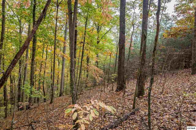 Lot 27 Whippoorwill Hill Way, Sevierville, TN 37862 (#230874) :: The Terrell Team