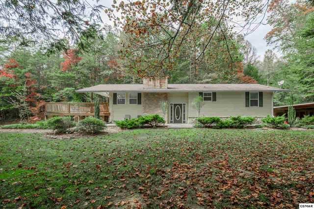 893 Glades Road, Gatlinburg, TN 37738 (#230880) :: Tennessee Elite Realty