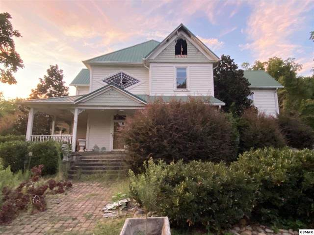 1680 Frank Dawn Rd, Dandridge, TN 37725 (#230893) :: Billy Houston Group