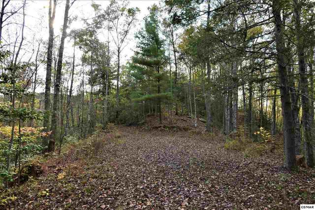 Lot 9 Christa Trail Christa Trail, Walland, TN 37886 (#230929) :: Prime Mountain Properties