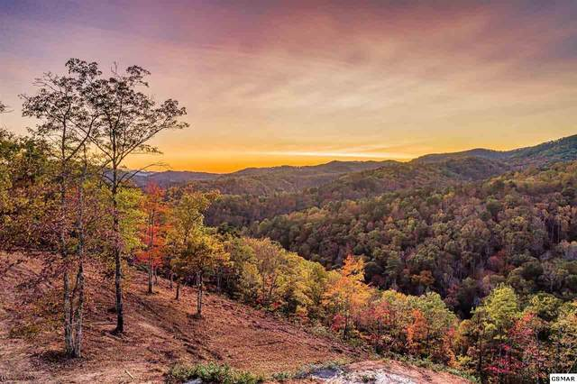Lot 173 Smoky Bluff Trl, Sevierville, TN 37862 (#230957) :: Colonial Real Estate