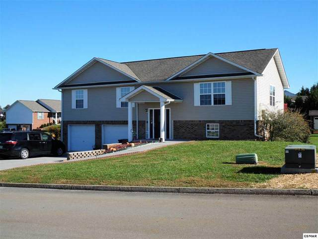 2405 Frost Valley Ct, Sevierville, TN 37876 (#230960) :: The Terrell Team