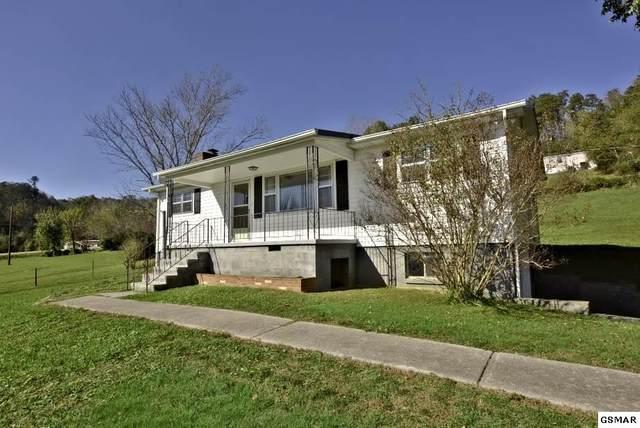 354 Webb Rd, Townsend, TN 37882 (#230962) :: Prime Mountain Properties