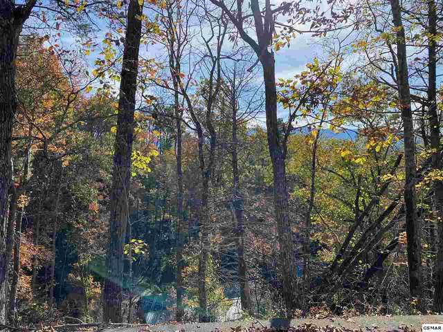 Lot 5 Old Cartertown Rd, Gatlinburg, TN 37738 (#230976) :: Tennessee Elite Realty