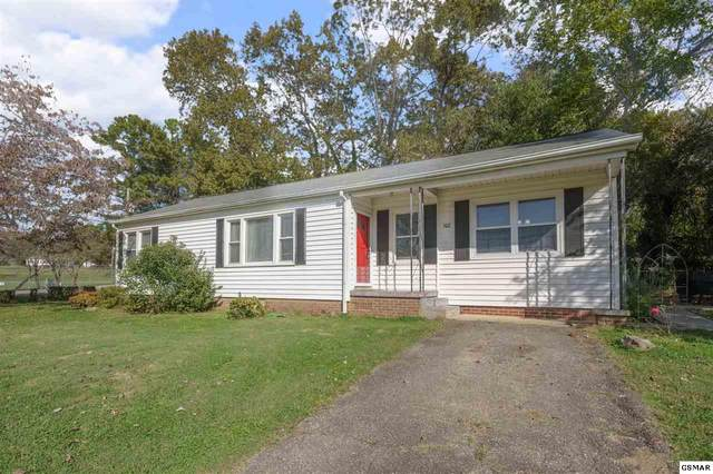 502 Elmira Lane, Maryville, TN 37804 (#230988) :: Four Seasons Realty, Inc