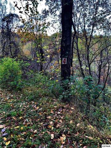 Lot 6 Big Buck Trail, Townsend, TN 37882 (#231012) :: Colonial Real Estate