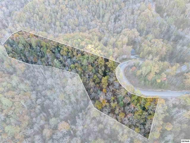 Lot 65 Whetstone Rd., Sevierville, TN 37862 (#231026) :: Colonial Real Estate
