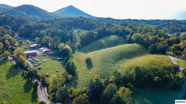 726 Bates Gibson Rd, Sevierville, TN 37876 (#231043) :: Colonial Real Estate