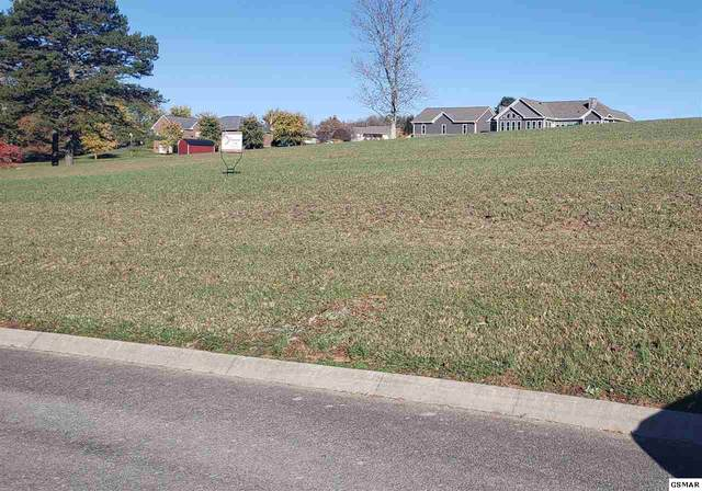 Lot 11 Smokey View Drive Sevierville, Kodak, TN 37764 (#231053) :: Colonial Real Estate