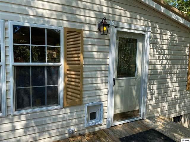 1615 Birch Dr, Sevierville, TN 37876 (#231067) :: Billy Houston Group