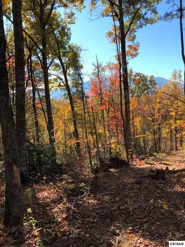 Parcel 77 Birds Creek Road, Sevierville, TN 37876 (#231079) :: Suzanne Walls with eXp Realty