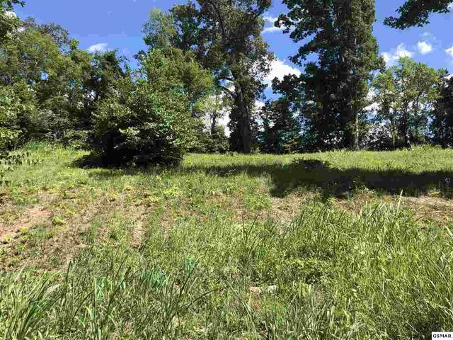 Lot 12 Infinity Lane, Sevierville, TN 37876 (#231081) :: Colonial Real Estate