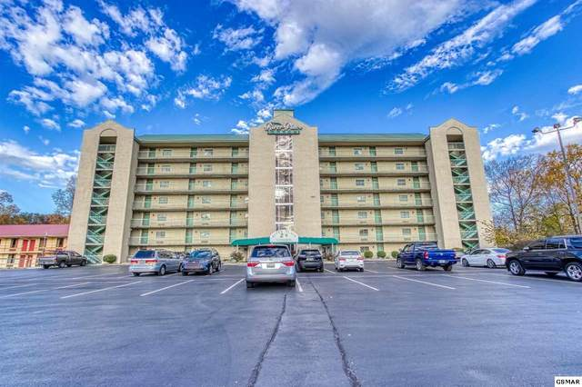 3215 N River Road Unit 306, Pigeon Forge, TN 37863 (#231085) :: Tennessee Elite Realty