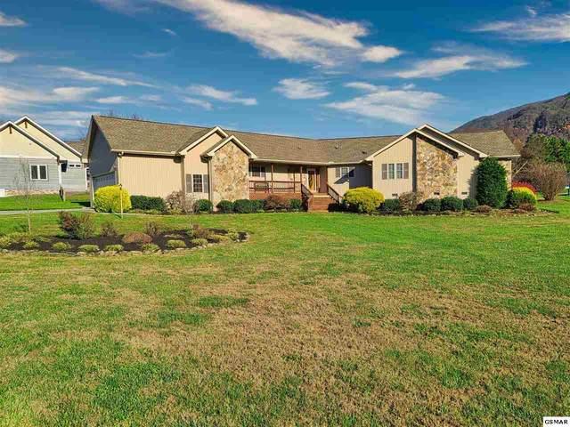 3585 Deer Field Cir, Sevierville, TN 37862 (#231123) :: Billy Houston Group