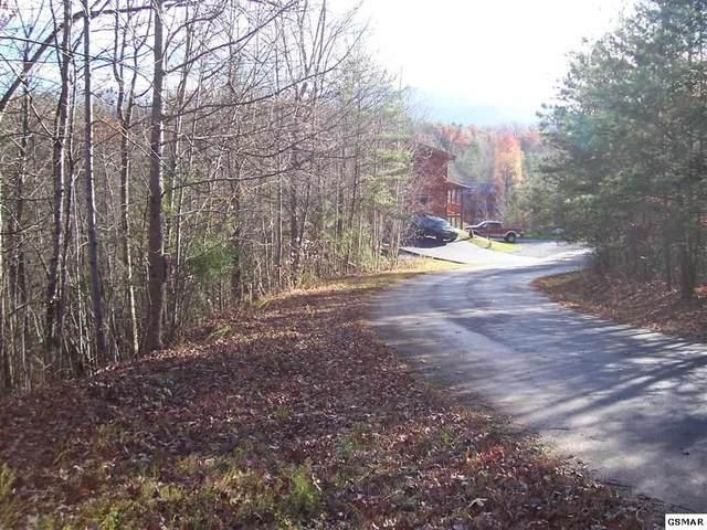 Lot 19 Treehouse Lane, Sevierville, TN 37876 (#231176) :: Four Seasons Realty, Inc