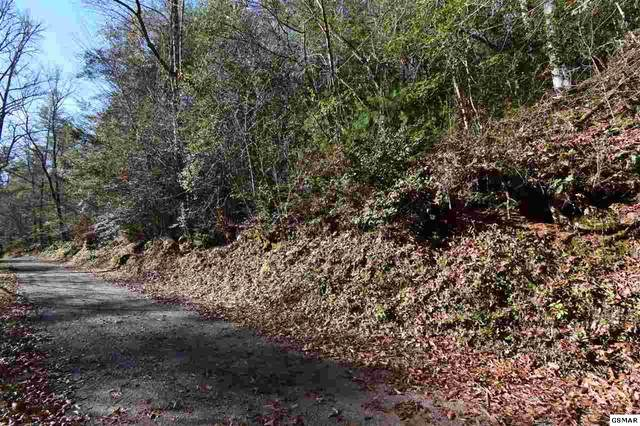 Lot 39 Bryant Hollow Way Rich Mountain W, Sevierville, TN 37876 (#231203) :: Billy Houston Group