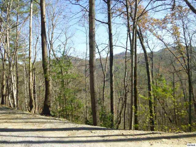 Lot 4 Sunset Rd., Sevierville, TN 37876 (#231218) :: The Terrell Team