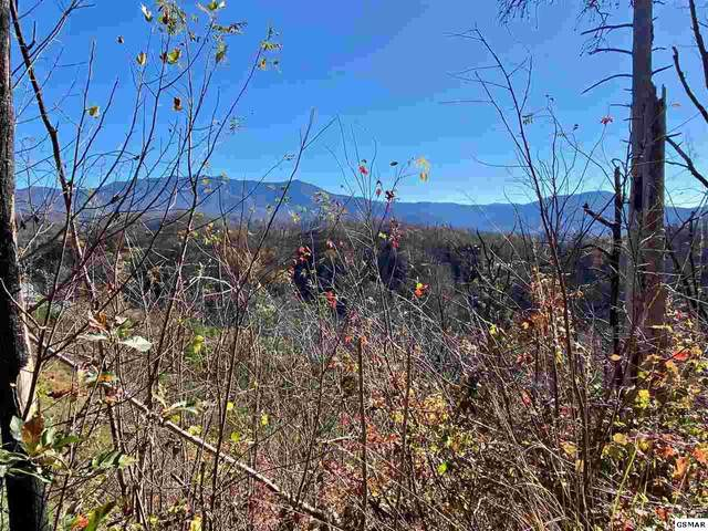 Sourwood Dr, Gatlinburg, TN 37738 (#231219) :: Tennessee Elite Realty