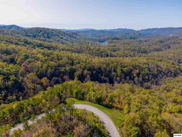 Lts 90W & 91 Long Rifle Rd., Walland, TN 37886 (#231223) :: Colonial Real Estate