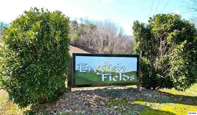 Lot 46, 47 English Fields Dr, Newport, TN 37821 (#231233) :: Billy Houston Group