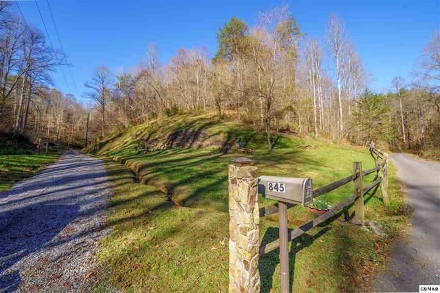 845 Bales Hollow Road, Seymour, TN 37865 (#231265) :: Jason White Team | Century 21 Legacy