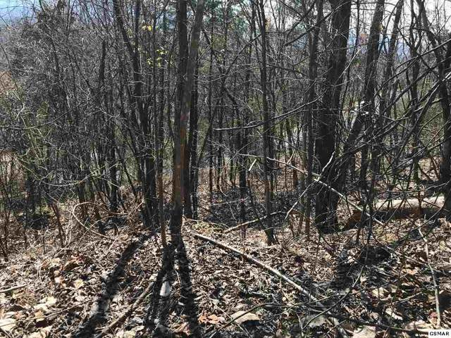 Lot 3 & 4 Ridgefield Dr, Sevierville, TN 37876 (#231283) :: Billy Houston Group