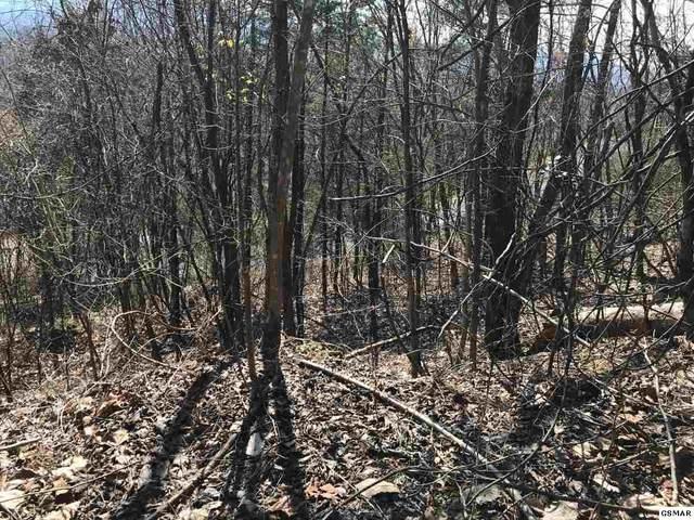 Lot 3 & 4 Ridgefield Dr, Sevierville, TN 37876 (#231283) :: Four Seasons Realty, Inc