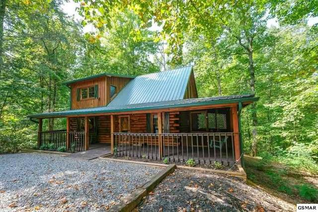 1011 Elm Circle Cozy Getaway, Sevierville, TN 37876 (#231289) :: Colonial Real Estate