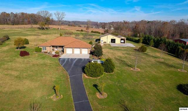 1032 San Martino Dr, Dandridge, TN 37725 (#231290) :: The Terrell Team