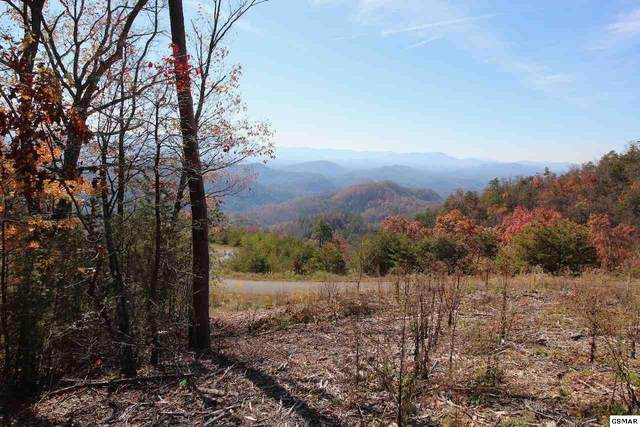 Lot 48 Mountain Ash Way, Sevierville, TN 37876 (#231292) :: Colonial Real Estate