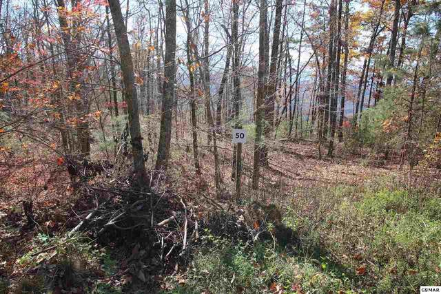 Lot 50 Mountain Ash Way, Sevierville, TN 37876 (#231304) :: Colonial Real Estate