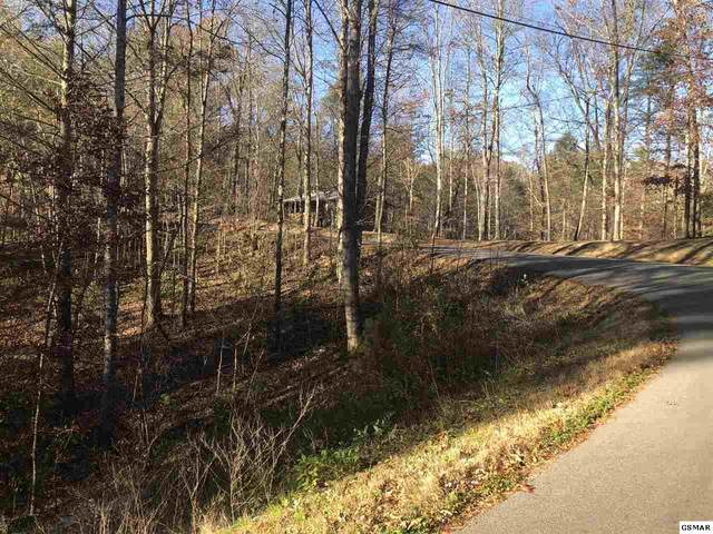 Lot 50-A Shell Mountain Rd, Sevierville, TN 37876 (#231329) :: Billy Houston Group