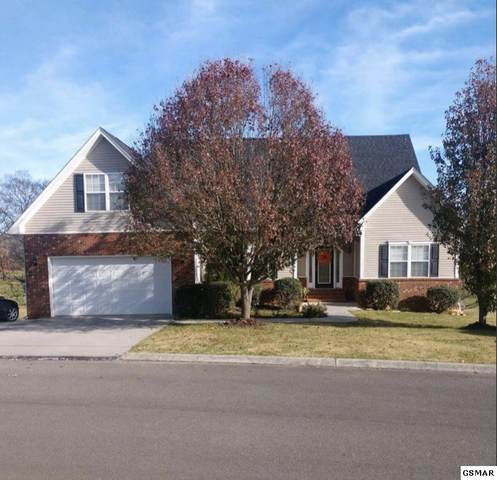 1941 Big Buck Ln, Sevierville, TN 37876 (#231338) :: Jason White Team | Century 21 Legacy
