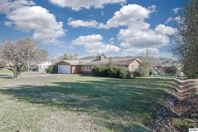 116 Madora Drive, Powell, TN 37849 (#231362) :: Billy Houston Group