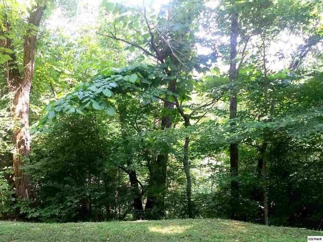 Lot Lot 2 Saddle Creek Way, Sevierville, TN 37862 (#231378) :: Jason White Team   Century 21 Legacy