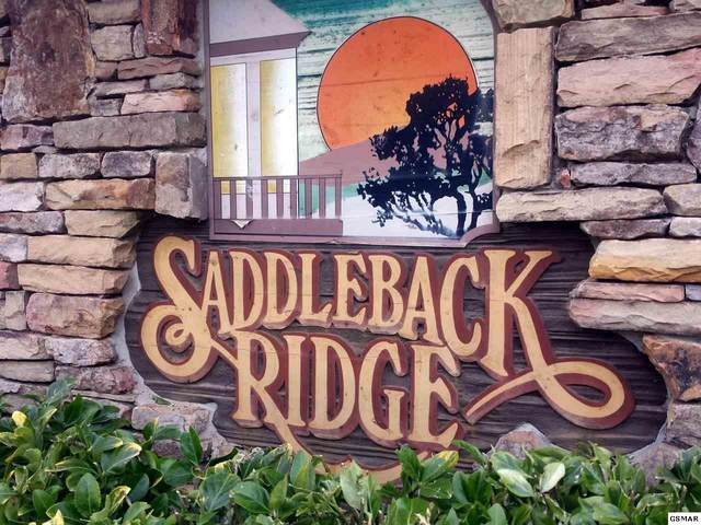 Lot Lot 10 Saddle Creek Way, Sevierville, TN 37862 (#231381) :: Jason White Team   Century 21 Legacy