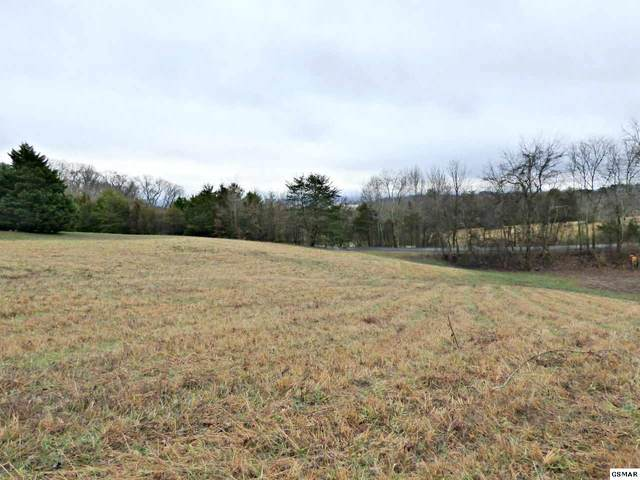Lot 31 Tom Webb Cr, Dandridge, TN 37725 (#231403) :: The Terrell Team