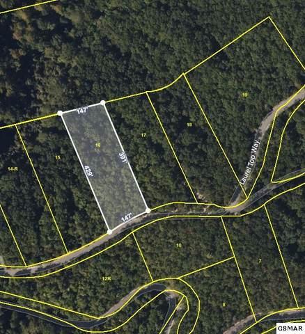Lot 16 Laurel Top Way, Gatlinburg, TN 37737 (#231404) :: Billy Houston Group