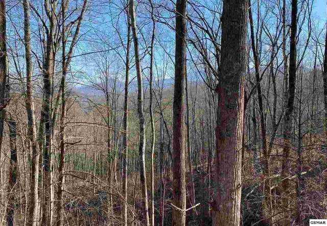 Lot 177 Cliff Branch Road, Gatlinburg, TN 37738 (#231422) :: The Terrell Team