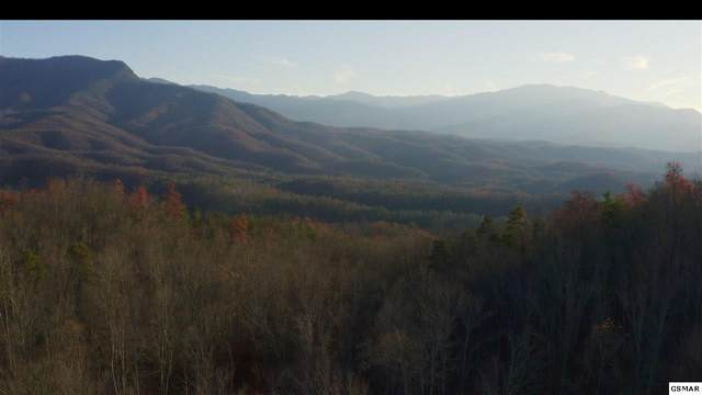 314 Acres Hickey Road, Gatlinburg, TN 37738 (#231439) :: Suzanne Walls with eXp Realty