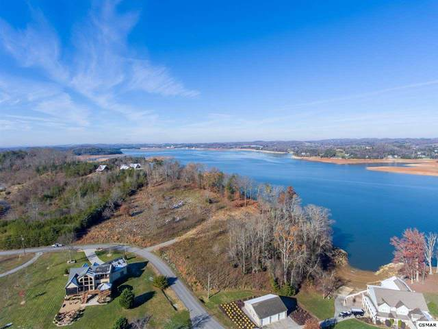 Parcel 37.01 Island View Rd, Sevierville, TN 37876 (#231440) :: Colonial Real Estate