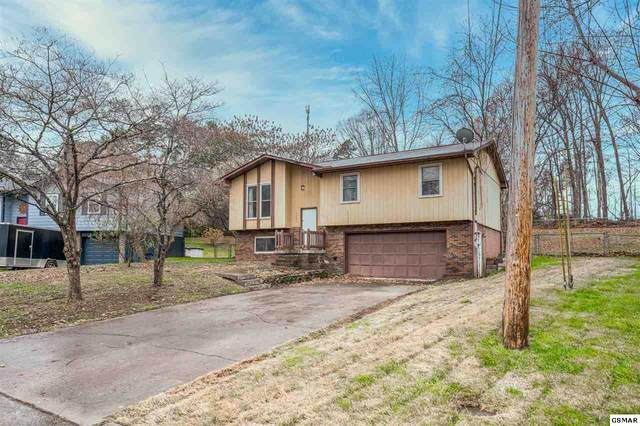 4109 Abercorn Road, Knoxville, TN 37921 (#231484) :: The Terrell Team