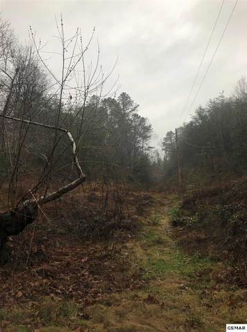 Lot TR 5 Valentine Branch Road, Sevierville, TN 37876 (#231512) :: Jason White Team | Century 21 Legacy