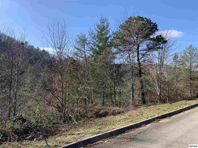 Lot 60 Smoky Ridge Way, Sevierville, TN 37862 (#231564) :: Jason White Team | Century 21 Legacy