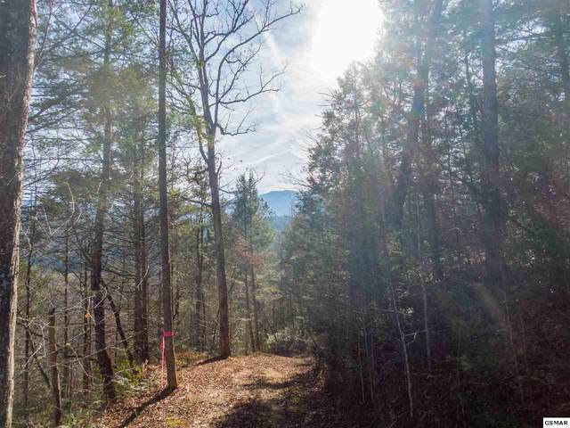 Lot 33 Fiddler South Way, Sevierville, TN 37876 (#231610) :: Billy Houston Group