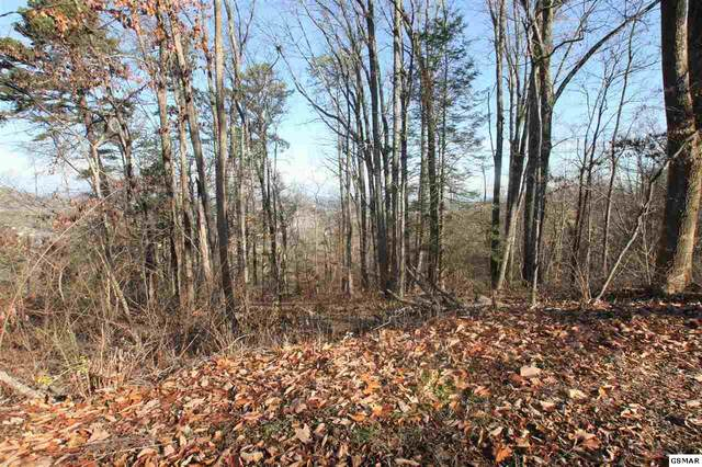 Lot 35 Twin City Way, Pigeon Forge, TN 37863 (#231613) :: Prime Mountain Properties