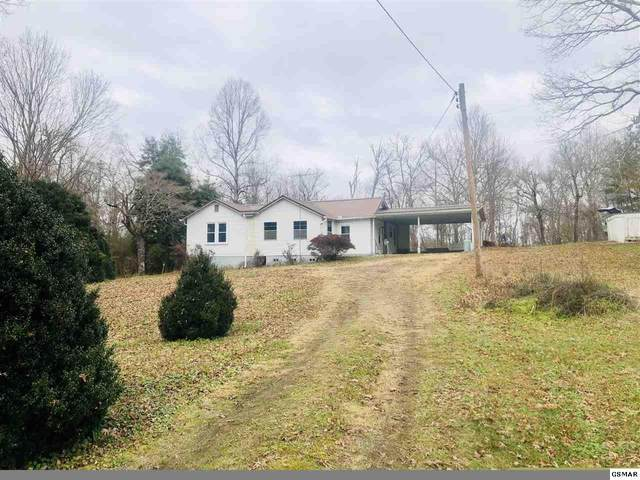 547 Patterson Rd, Walland, TN 37886 (#231628) :: The Terrell Team